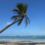 Einmal die Karibik erleben - Ein Traum vieler Reisender